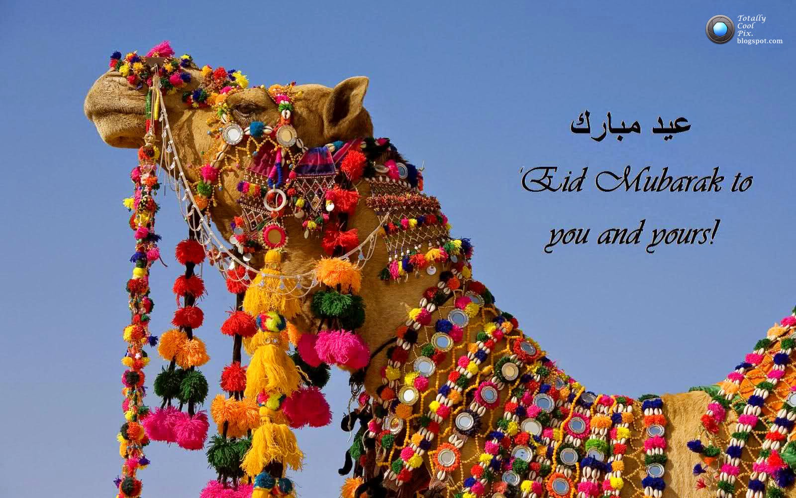 All Wishes Message Greeting Card And Tex Message Eid Ul Adha