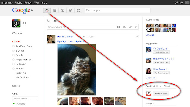 Google+ Invite Friends button