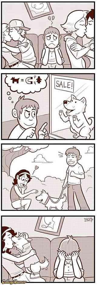 pies, miłość, marzenia