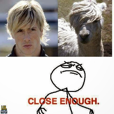 fernando torres - funny similarity picture