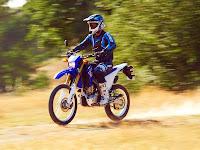 2014 Yamaha WR250R Gambar Motor 1