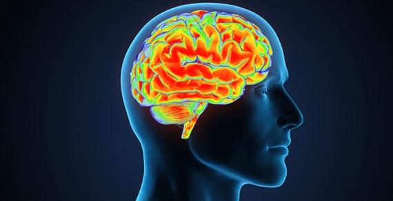 Incrível vídeo mostra como as memórias se formam no cérebro (com video)