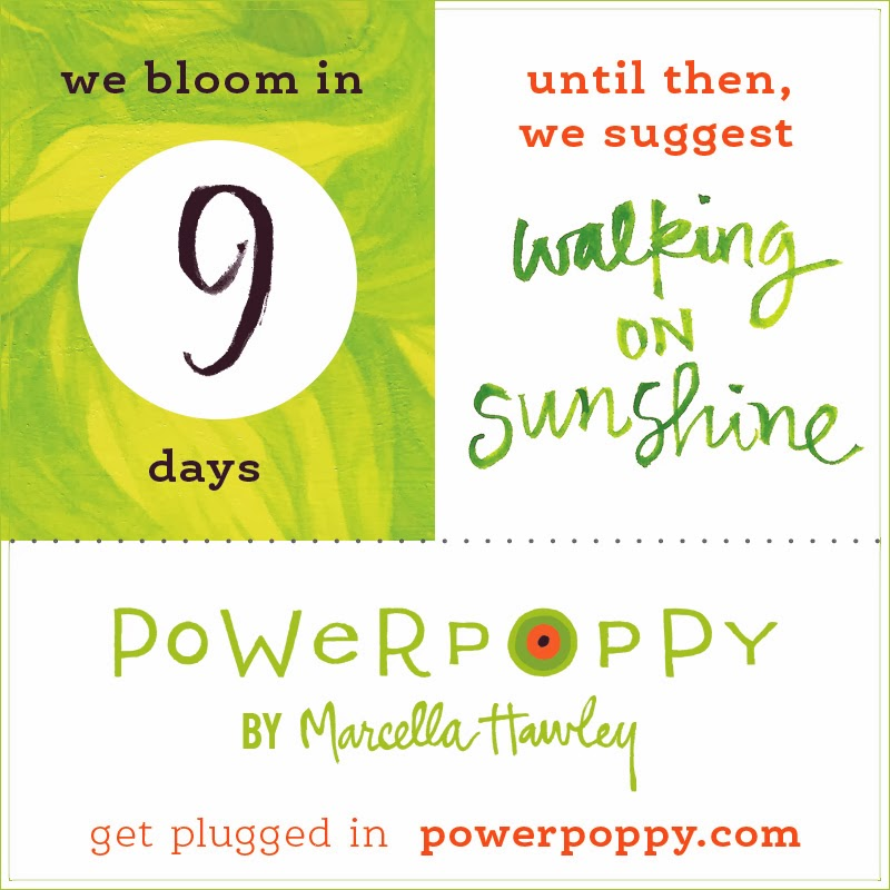 www.powerpoppy.com