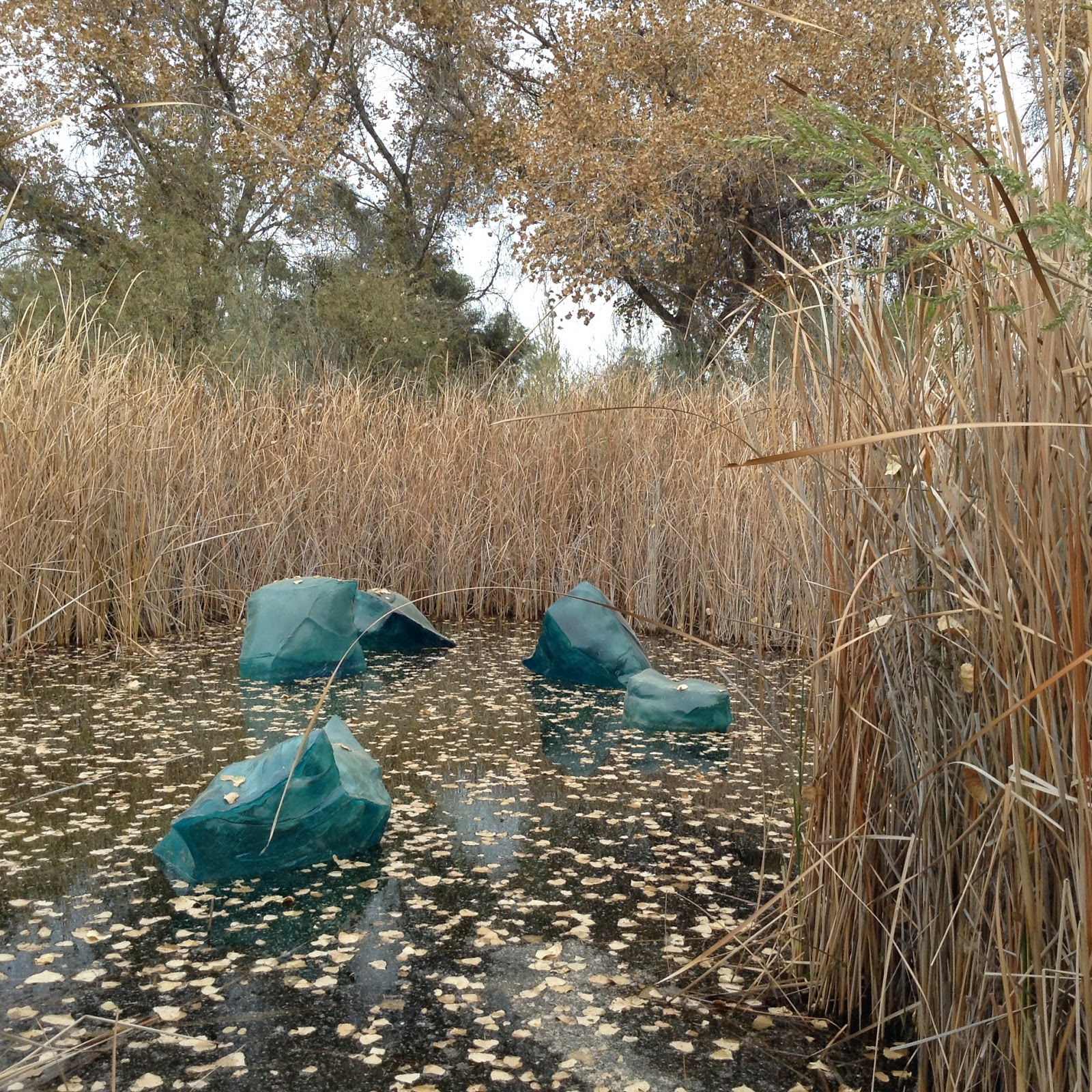 Adventures in PEI and Beyond!: Chihuly\'s Glass Sculpture Exibition ...