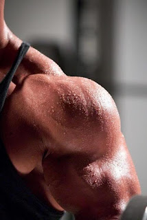 Bodybuilders Muscles