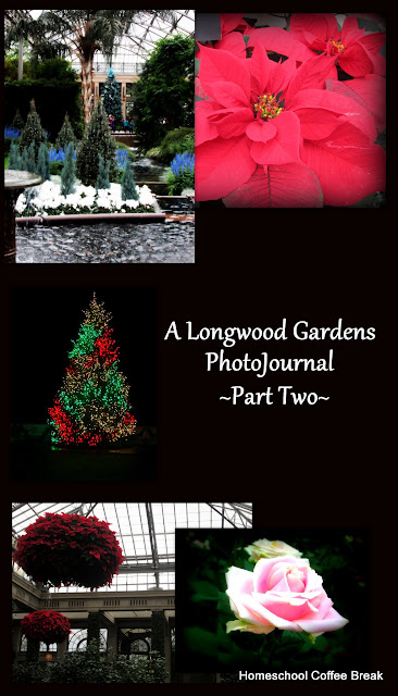 A Longwood Gardens PhotoJournal - Part Two on Homeschool Coffee Break @ kympossibleblog.blogspot.com