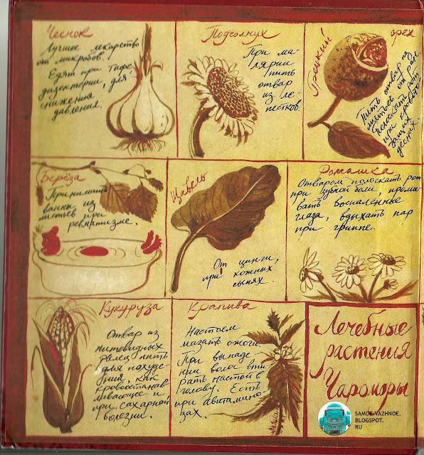Книга СССР для детей рецепты магических снадобий рецепты зелья чертежи старая советская из детства читать онлайн скан