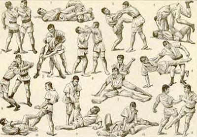 jiu jitsu  moves