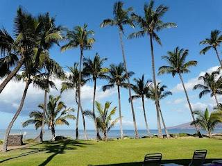 Maui Condo FABO