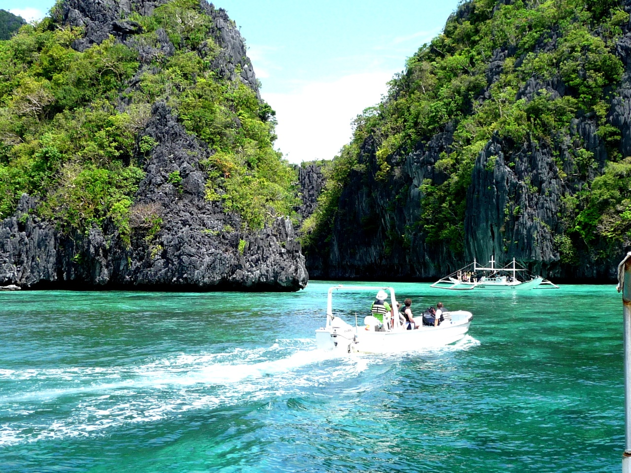 philippines and tour Philippines local experiences: day tour from cebu and mactan: oslob whale  shark watching and tumalog falls, cebu, 110reviews day tour from palawan: .