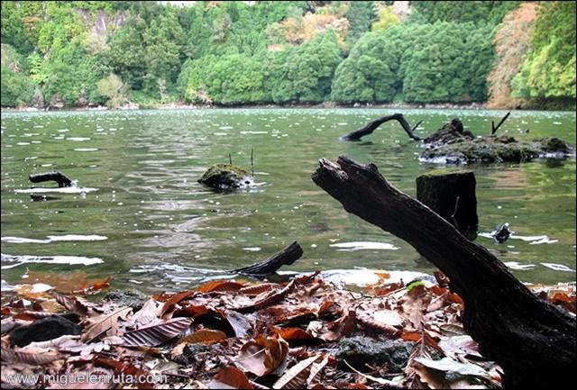 Lagoa-do-Congro_4