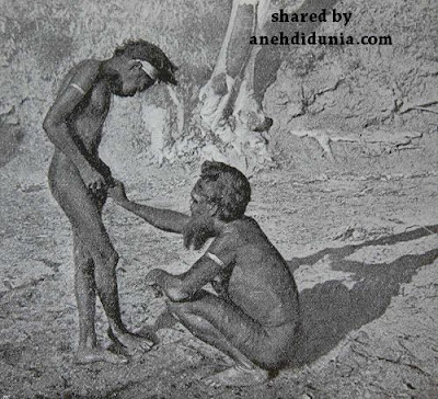 Cara Sunat Suku Mardudjara Aborigin