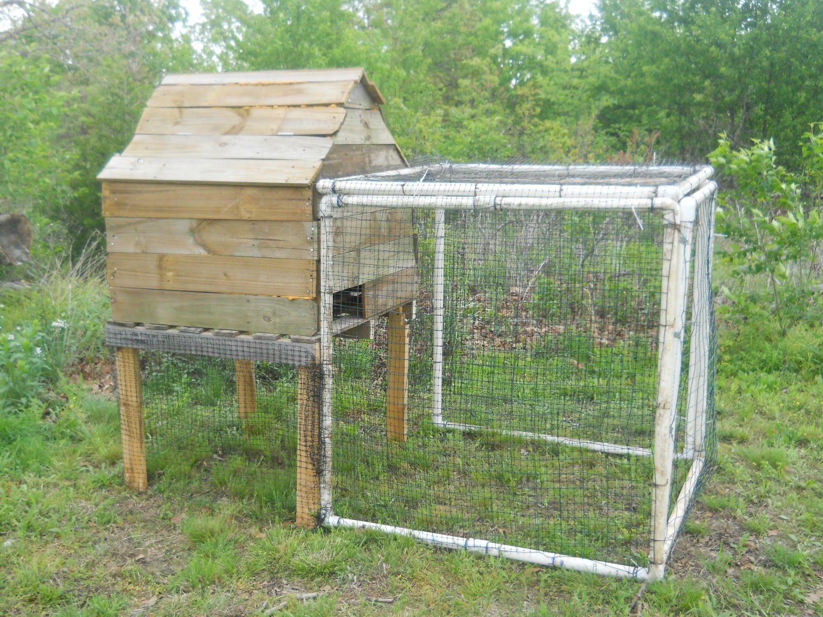 Cat chicken duck house one crafty lady for Chicken and duck coop