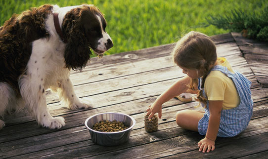 the optimal pet food what is ad libitum feeding what are