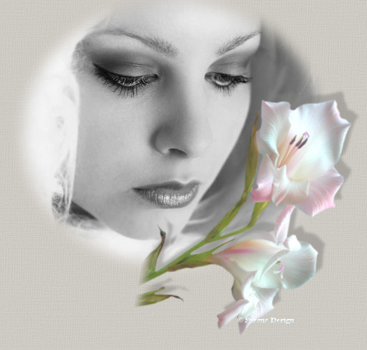 Rosas- Mujer