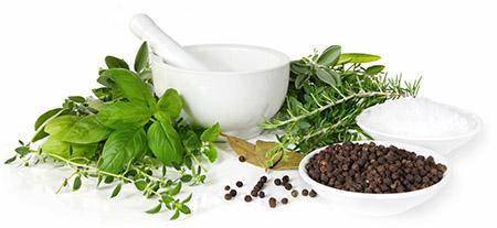 Bitkisel tedavi uzmanı