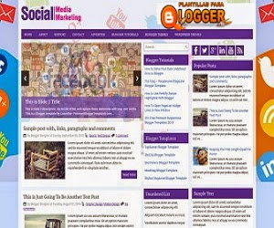 Social Media Marketing Theme