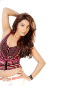 Sonia mann sizzling photo shoot-thumbnail-9