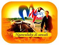 Potret pertanian yang sedang dialami Indonesia, mau dibawa kemana petani ini?