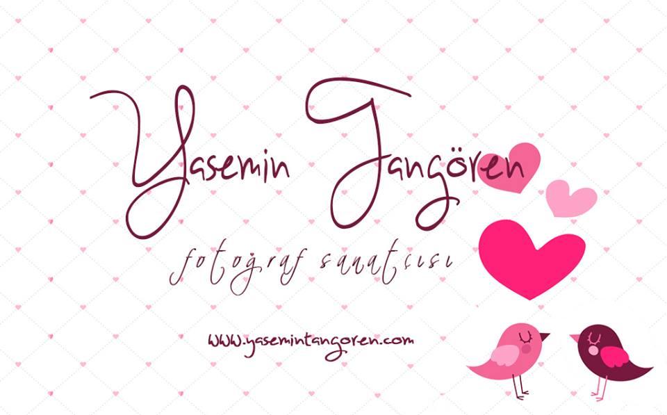 yasemin tangören blog