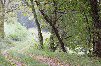 Image of a little path through the french countryside