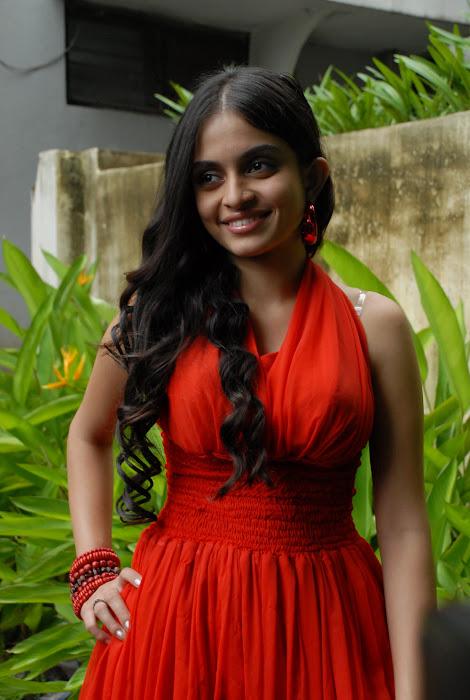 sheena shahabadi shoot red dress photo gallery