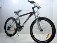 3 Sepeda Gunung PACIFIC MASSERONI 2.0 18 Speed Shimano 24 Inci