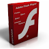 Adobe Flash Player 14.0.0.125 Download Now