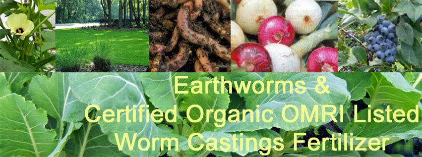 Organic fertilizers and earthworms for your garden