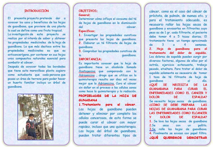 PROYECTO FINALISTA FERIA DE CIENCIAS UGEL N° 06: marzo 2015