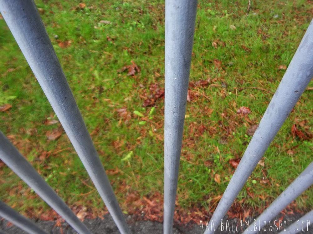 Rainy railings