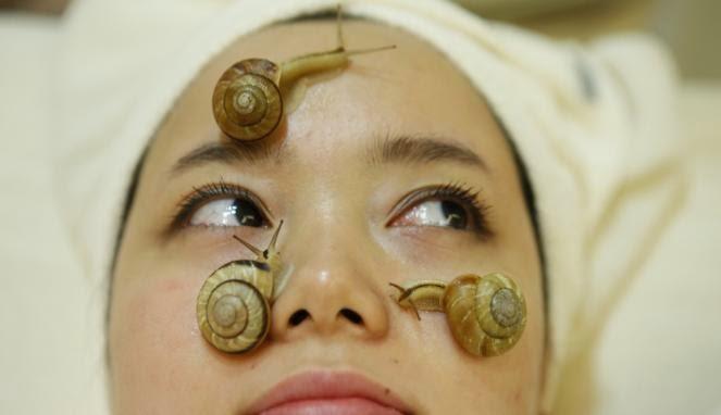 Tren Facial Jepang dengan Lendir Bekicot