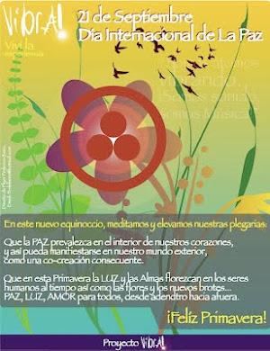 Proyecto Vibra