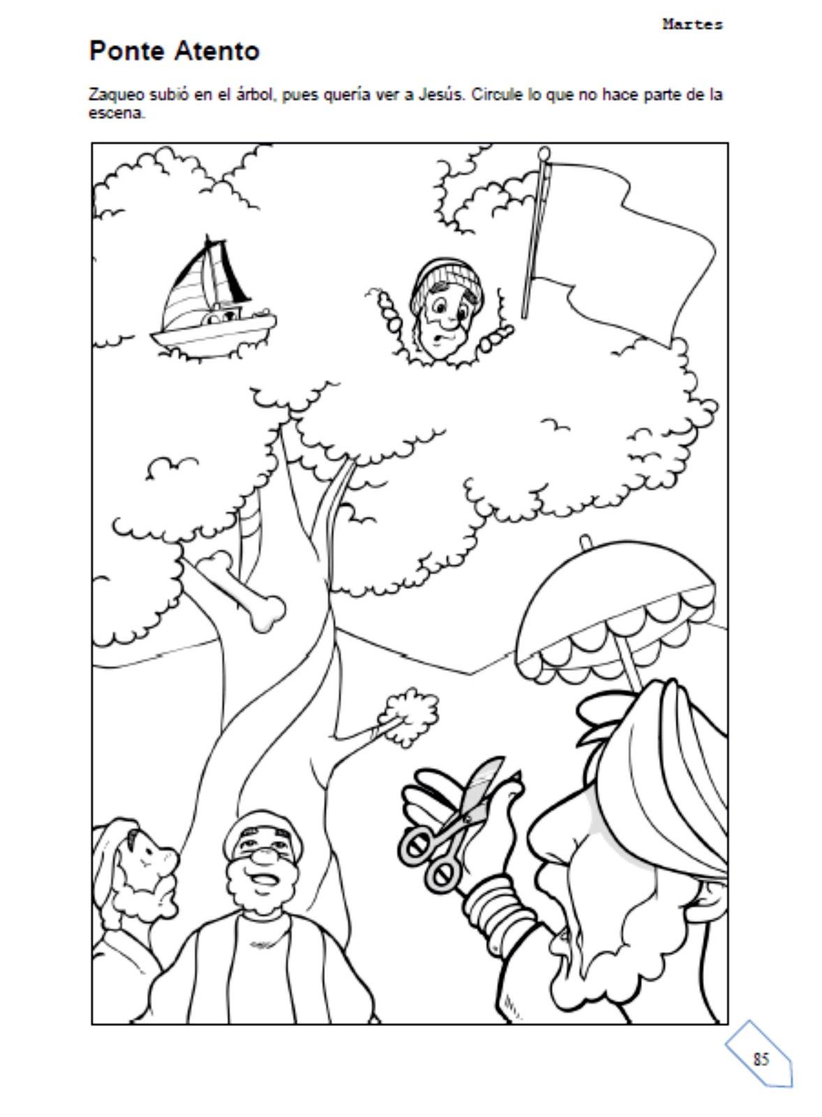 Fantástico Dibujos Para Colorear Historia Zacchaeus Adorno - Dibujos ...