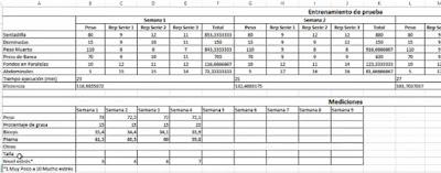 [Aporte]Excel que mide el sobrentrenameinto, estancamiento y súper compensación – teoría y caso real Imagen%2B009