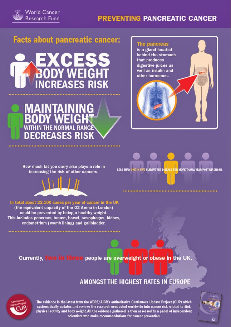 overweight risk essay