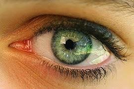 Manfaat Buah Untuk Kesehatan  Mata
