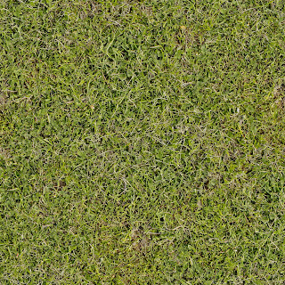 High resolution seamless textures ground for Forest floor definition