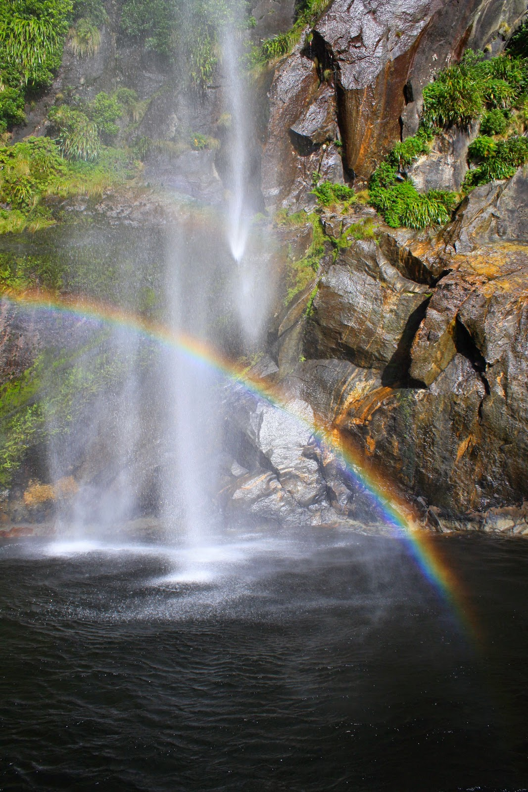 A waterfall making a rainbow in Milford Sound.
