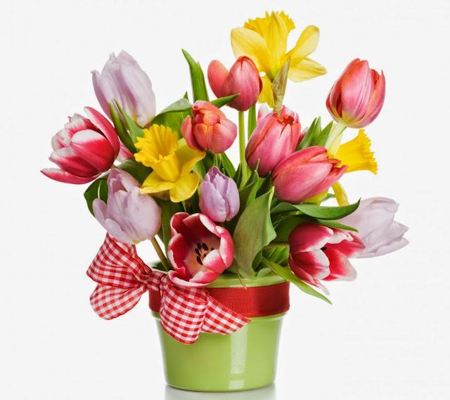Flores de colores para el Dia de las Madres