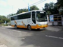 Sargede, 30 - 44 seat