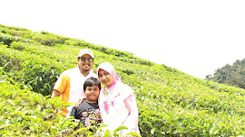 Cameron Highland 2012