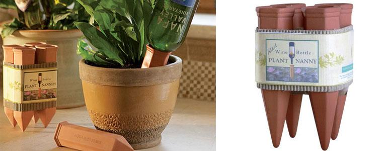 Flores en tu ensalada regar durante las vacaciones - Hogarmania jardineria ...