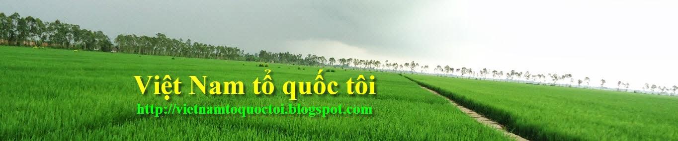 Việt Nam tổ quốc tôi