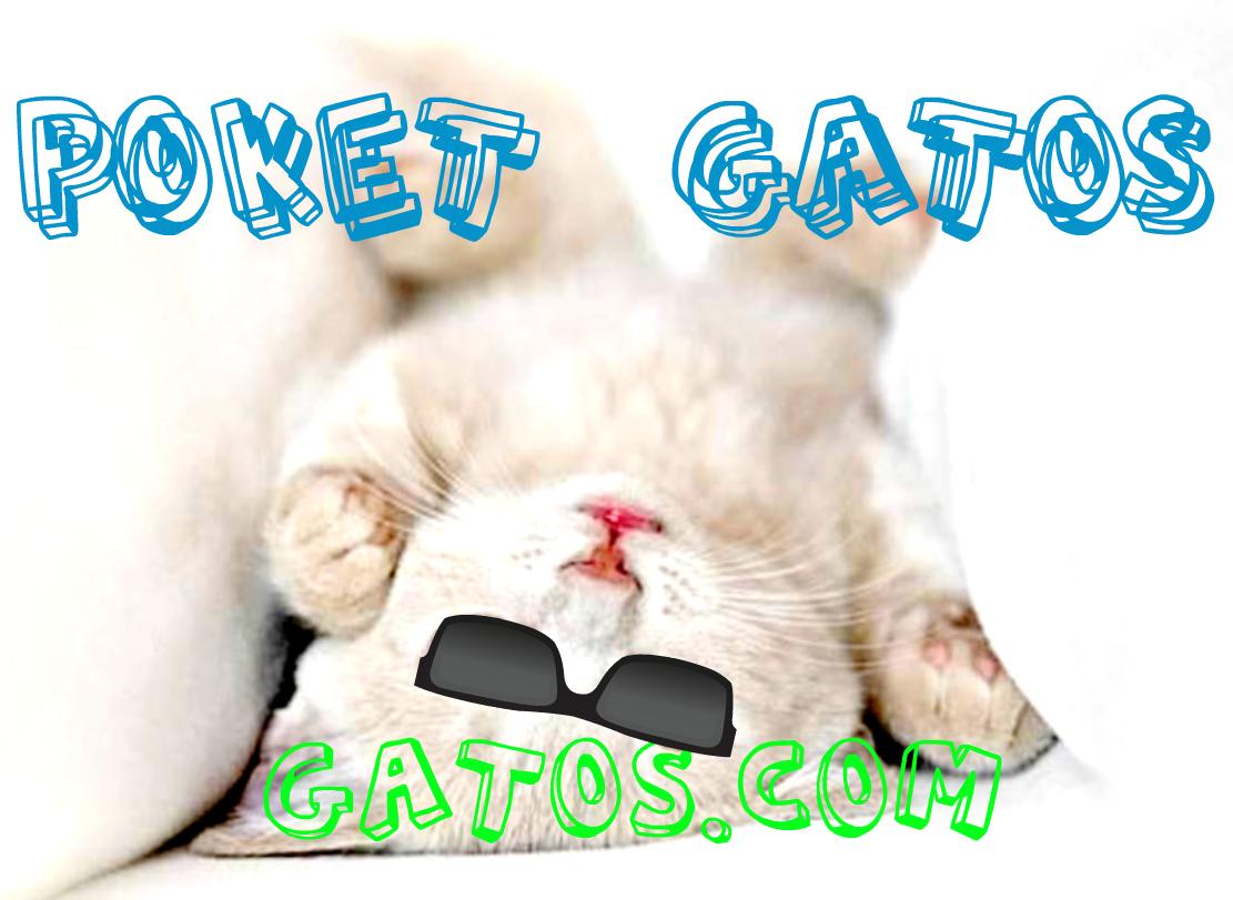 Gatos.com