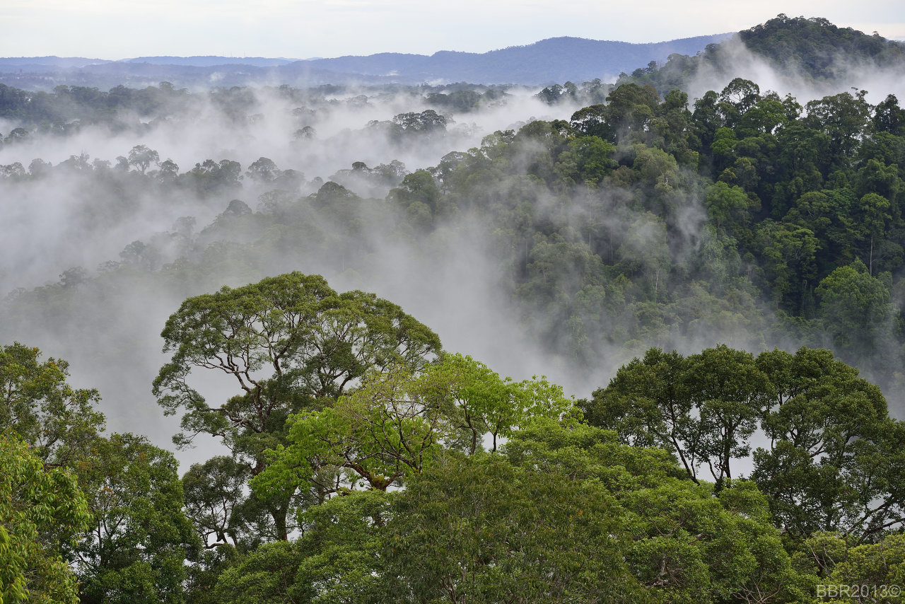 stories national parks should visit southeast asia