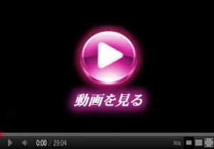 ハメハメセクス動画