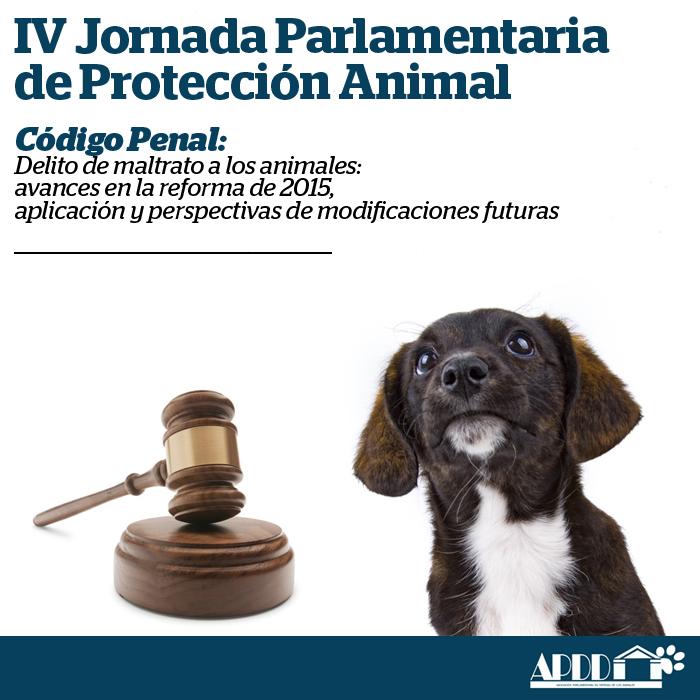 CONCLUSIONES IV JORNADA - Apdda