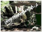 برگردان فارسی گودلهای عمیق اثر الیس مونرو