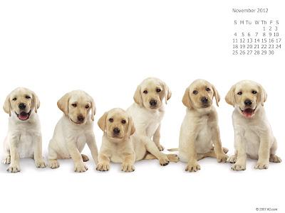 calendar noiembrie